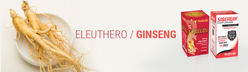 Eleuthero / Ginseng